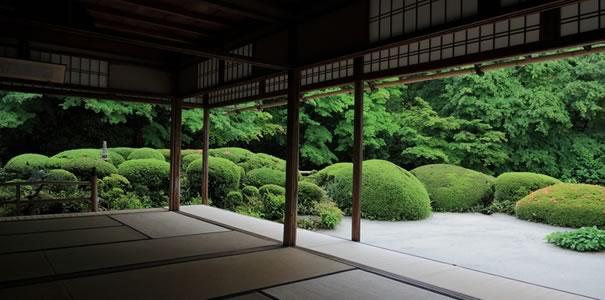 日本家屋と日本庭園